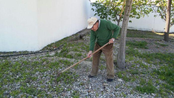 Grupo Reifs | Beneficios de la Horticultura en las personasmayores